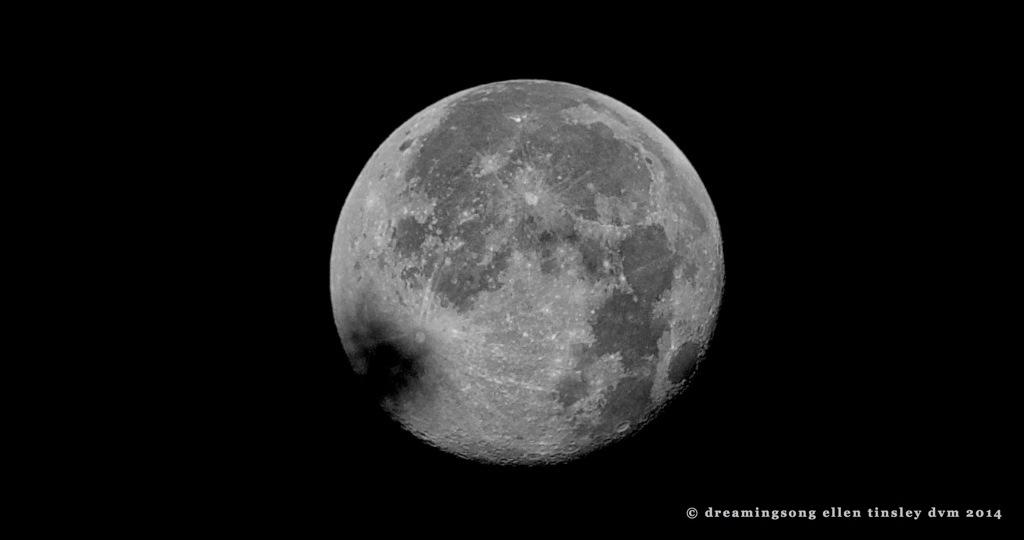 _RK_8974 full moon setting 6-14-2014  2014