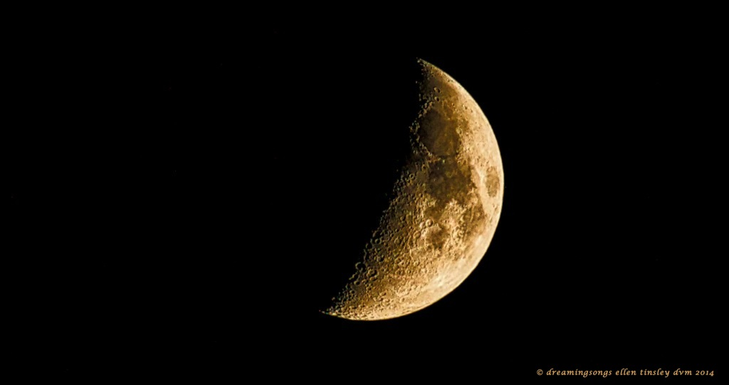 _RK_2318 waxing crescent moon 2014