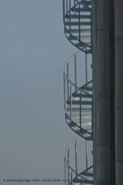 _RK_8493 blue spiral stairs 2014