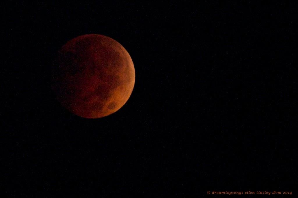 _RK_3552 lunar eclipse 06-36-50 2014