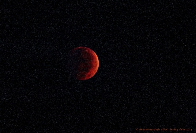 _RK_3554 lunar eclipse 06-39-59 2014