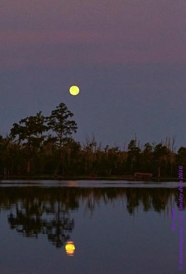 WALK0436 06-20-16 @ 05-39-59 Mattamuskeetsummer soltice full moon
